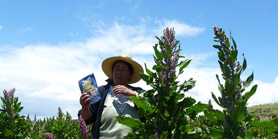 Vignette : Une agricultrice péruvienne dans son champ.