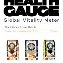 www-healthgauge-com-20121107-cover-icon