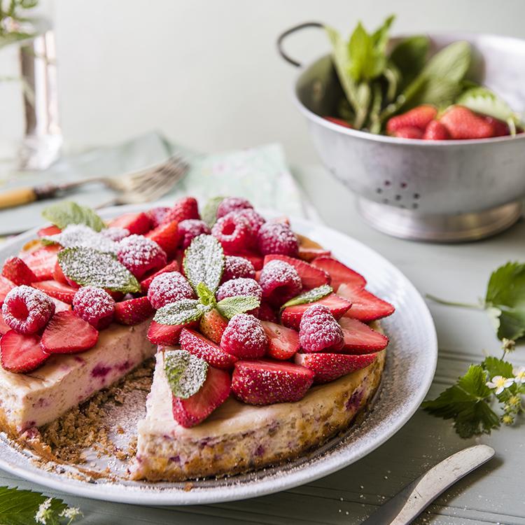 cheesecake_750