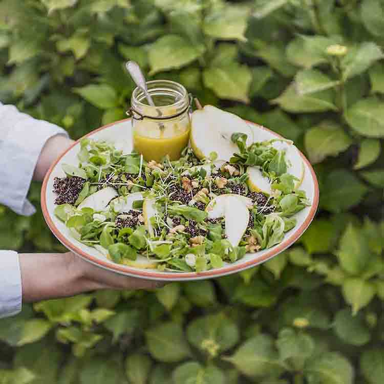 Quinola-quinoa,-pear-and-walnut-salad-with-honey-and-mustard-dressing167-Edit_750